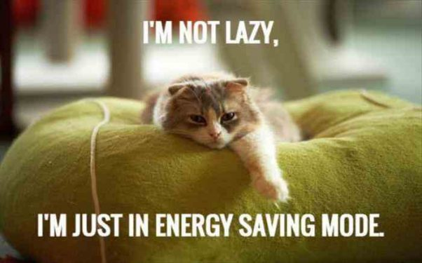 I'm NOT Lazy You Know